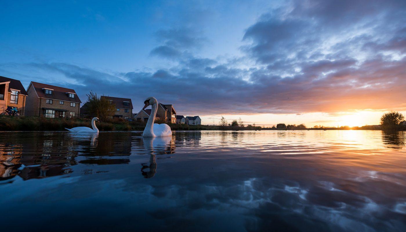 Cambourne lakes