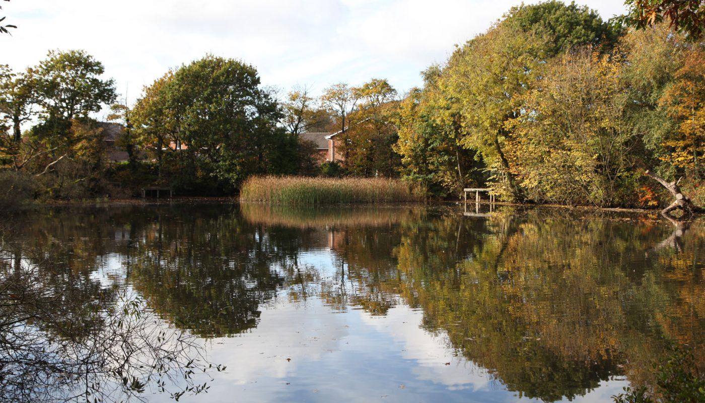 Lytham Hall lake photo